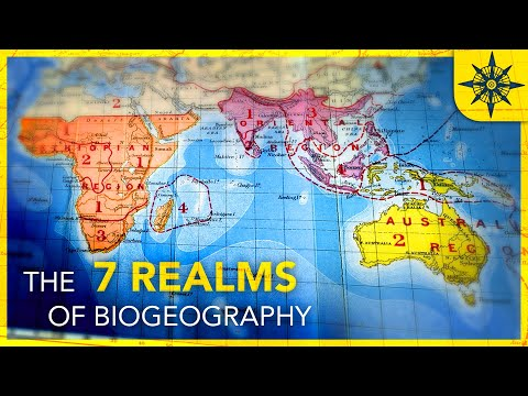 What Are The 7 Realms of Biogeography?