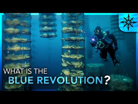 What is the Blue Revolution?